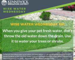 Wise Water Wednesday 6.6.18
